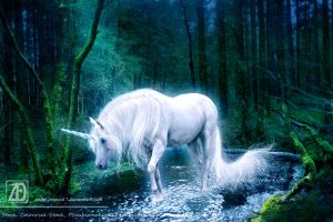 Photomanip: Child of Light by Jenova87