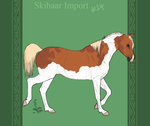 Skibaar Import 24 by horsy1050