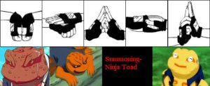 Toad Summoning- Hand Signs by Bogardeth