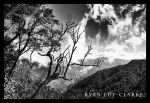 Hollywell by LeTHaL-1-