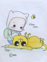 Finn and Jake: Timeless by crab-pinches
