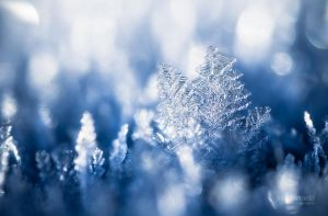 Ice Crystals by JoniNiemela