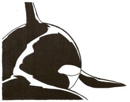 Orca from Behind by Stonegate