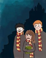Harry Potter trio by llstephy