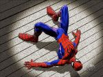 Wallcrawler by LittleShaolin