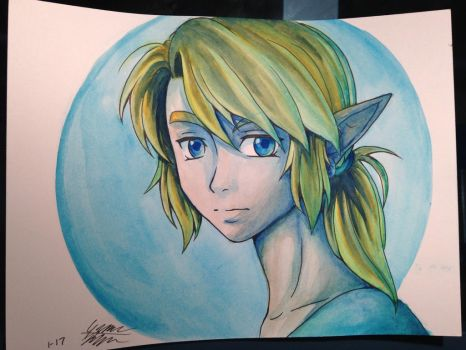Breath of the Wild Link by Midnameowfries