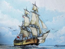 HMB Endeavour by worldIsee