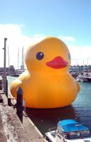 HUGE CHANNEL FOUR DUCKY by bruised--vein
