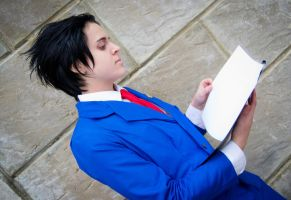 Ace Attorney: PW - No truth without evidences by MitsukoUchiha