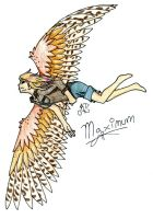 Maximum Ride by Aura-BleedingHeart