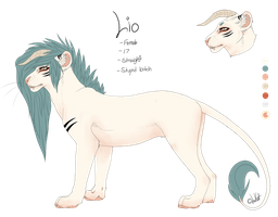 Lio's Reference - 2013 by LioKat