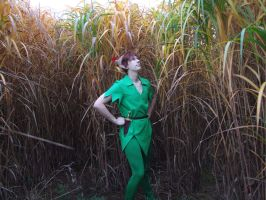 Peter Pan: Neverland savannah by Jake-Peter-Pan