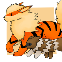 Zigzagoon and Arcanine by Lexi247