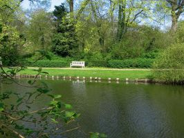 just a bench in the park by schaduwvacht