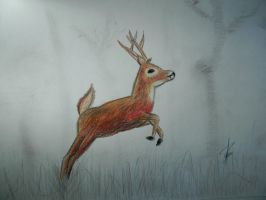 deer jumping by fayettedream