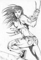 X-23 8 by Dannith