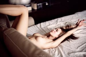 4636 by Levine-photography