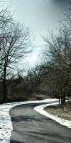 bike trail panoramic by Staticpictures