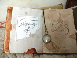 Gravity Falls Book n3 by vappletree