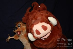 Douglas Pumbaa and Timon Plush by dapumakat