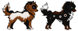 Lapphund Auctions by Midnight-Adopts96