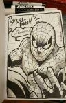 Inktober Day 2 - Spider-Man by SupaCrikeyDave