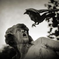 the raven by anjelicek