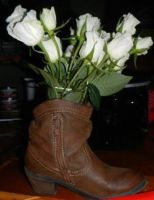 The boot and Roses by BVS-stock