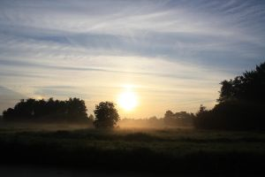 12-08-01 Sunrise 3 by Herdervriend