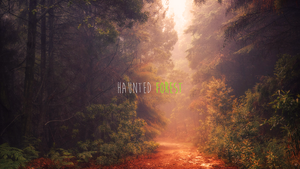 Haunted Forest Wallpaper by soficanorio