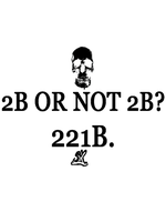 2B or not 2B? 221B. by whodyathink
