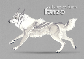 OC concept: ENZO by areot