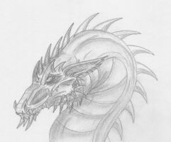 Sketchy Dragon Head by Scatha-the-Worm