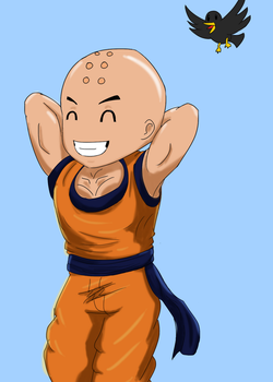 Krillin and Bird by nwizard2