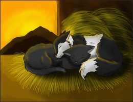 Ravenpaw and Barley by Crazydog12