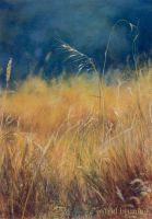 Summer Weed - Pastel Painting by AstridBruning
