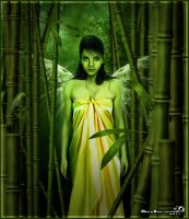 Fairy bamboo by mendha