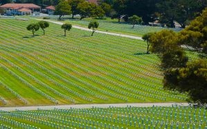 RB 08-26-2011 014 GGNatlCemetery by rbeebephoto