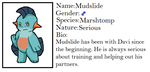 Pokeprofile: Mudslide by Dianamond
