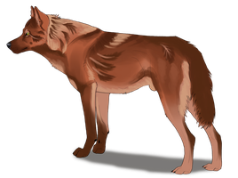 Wolf design for Figgetywinks by Maranez