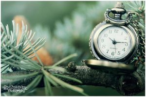 Pocket Watch 10 by Clerdy