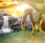 Dragon by Chipo811