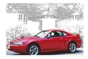 My Stang by Gilles-Marchand