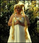 Princess Serenity - In The Name of the Moon by Shiera-Sama