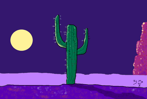 CACTUS NIGHT by Zayd-Depaor