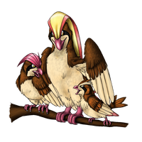 Pidgey and evos by AFrozenHeart2