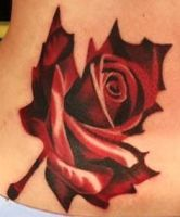 Rose on hip in leaf by CreativeCurseKina
