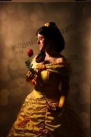 For The Rose was Truly an Enchanted Rose by senior007