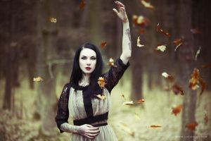 Autumn Leaves I by luciekout