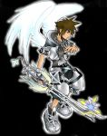 Winged final form sora by silvahedgehog1013